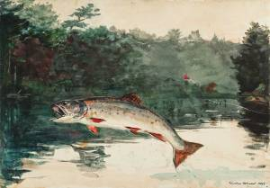 Leaping Trout, Winslow Homer